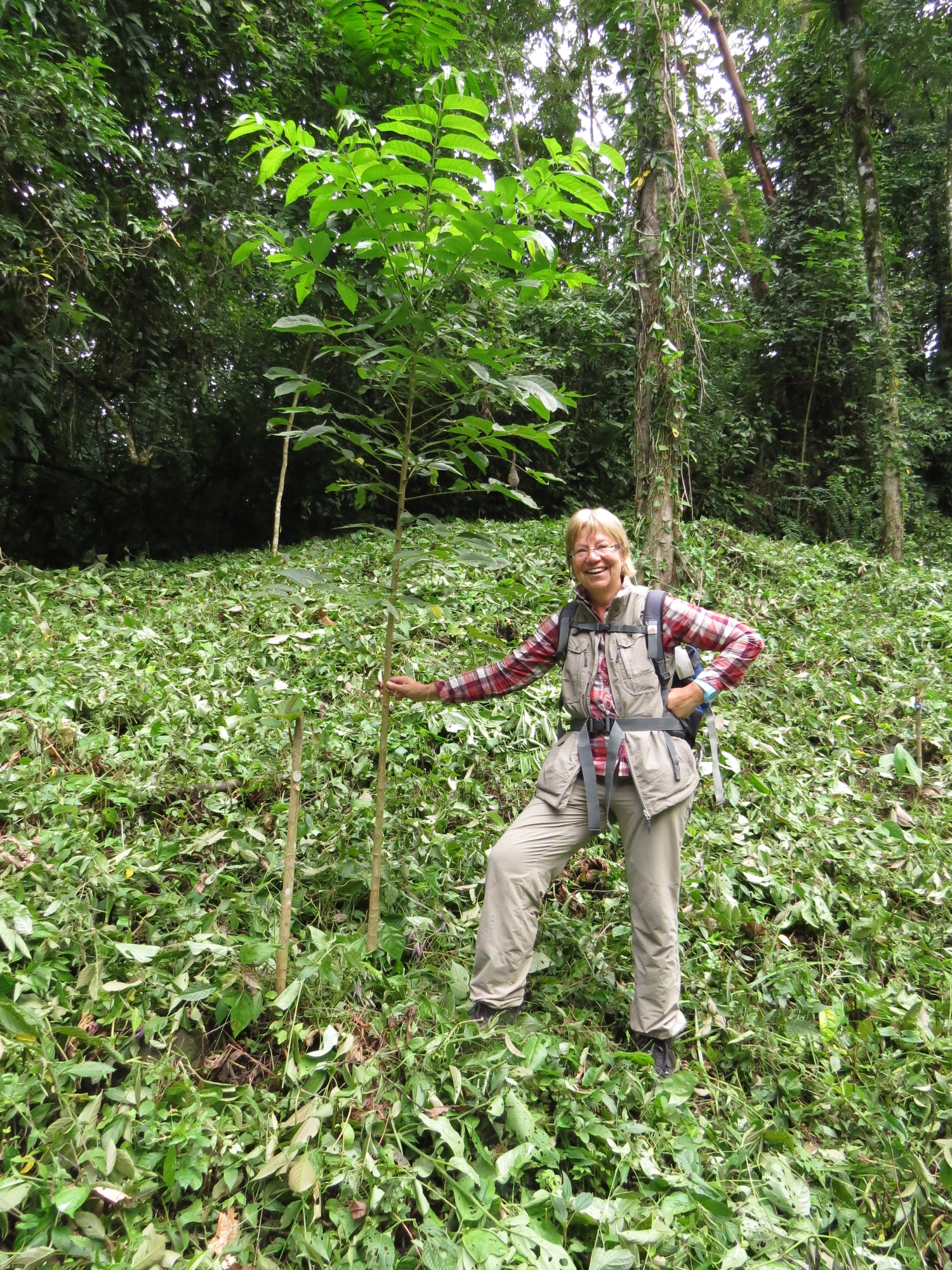 Dritter Baumpate besucht unser Wiederaufforstungsprojekt im Regenwald